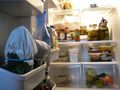 fridge_contents