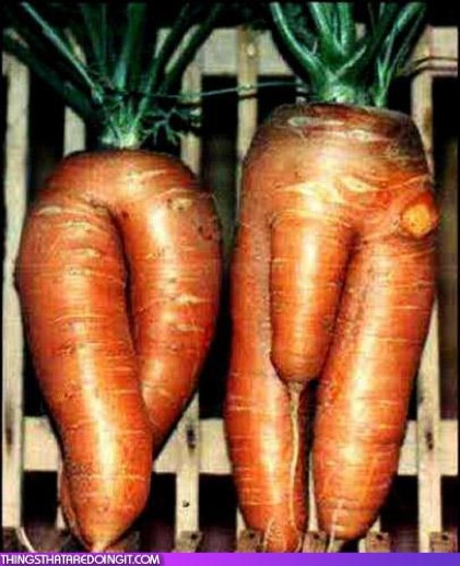 naked_carrots_genitals_thingsthataredoingit